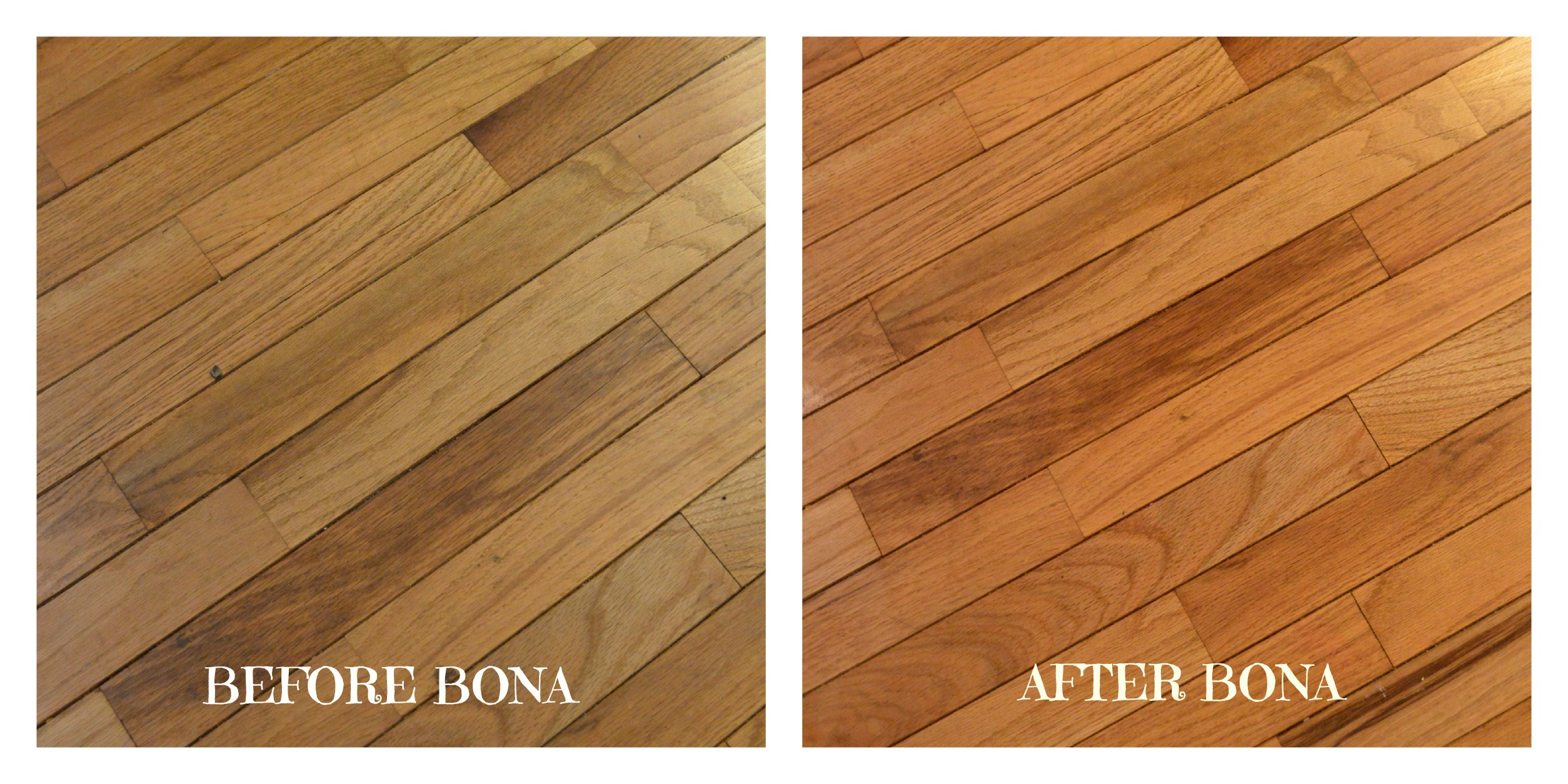 Bona Hardwood Floor Mop Archives Mumblebee Inc